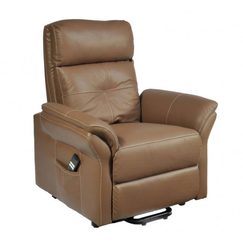 fauteuil releveur diamant 2 moteurs. Black Bedroom Furniture Sets. Home Design Ideas